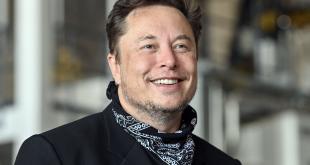 Elon Musk Dongkrak Harga SHIBA INU Hingga DOGE